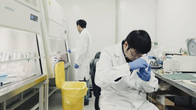 Researchers at I-Mab Biopharma in Shanghai, Dec. 12, 2017. A growing number of Chinese pharmaceutical companies are trying to break into the United States, seeking regulatory approval to offer their treatments for cancer and other ailments. (Yuyang Liu/The New York Times)