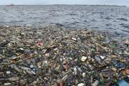 IMAGE: Supermarket chain to ban plastic packaging within 5 years