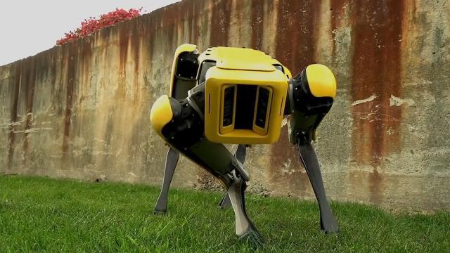 The SpotMini robot