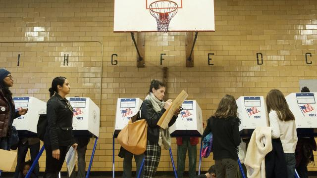 FILE -- Voters in line to vote at a public school in Brooklyn, Nov. 8, 2016. Voter intimidation can include aggressive questioning about people's qualifications to vote, including their citizenship status, criminal record or residency requirements (Bryan Thomas/The New York Times)