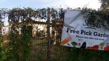IMAGE: Durham urban farm earns $40K award for work
