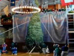 Crews use scaffolding to set up the Christmas tree at the Biltmore Estate.