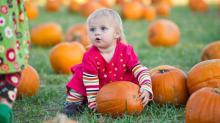Pumpkin_Farms_10-15-11-30