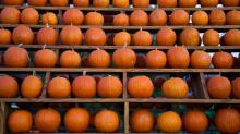 Pumpkin_Farms_10-15-11-46