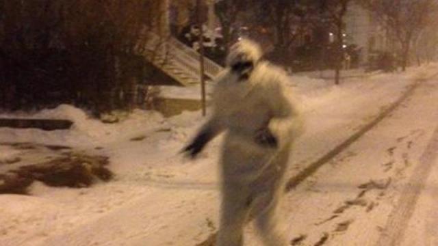 Boston Yeti
