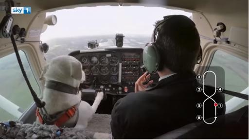 Did you read the headline? Dogs fly planes. Why do you need anything else here. Dogs fly planes in this video. Go watch it. (Deseret Photo)