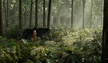 "Mowgli (Neel Sethi) and Bagheera (voice of Ben Kingsley) in ""The Jungle Book,"" an all-new live-action epic adventure. (Deseret Photo)"