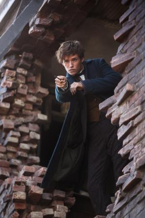 "Eddie Redmayne as Newt Scamander and in Warner Bros. Pictures' ""Fantastic Beasts and Where to Find Them."" (Deseret Photo)"