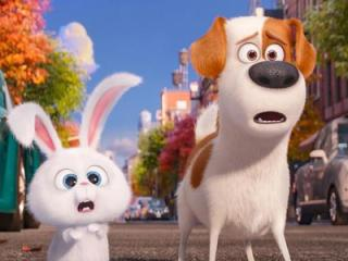 """Snowball (voiced by Kevin Hart) and Max (Louis C.K.) confront danger in the big city in """"The Secret Life of Pets,"""" now on Blu-ray and DVD. (Deseret Photo)"""