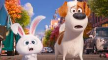 IMAGES: 'Secret Life of Pets,' 'Jason Bourne' on Blu-ray, DVD this week
