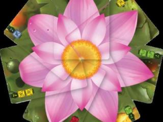As players play their cards in the game Lotus, they combine to make beautiful flowers that enrich the table and provide lots of eye candy. (Deseret Photo)