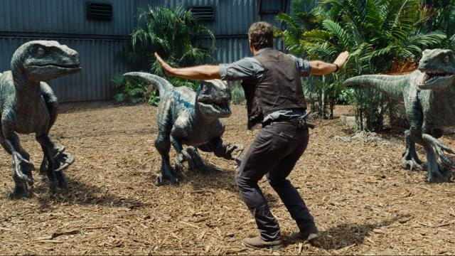 "Chris Pratt attempts to control three Velociraptors in ""Jurassic World."" (Deseret Photo)"
