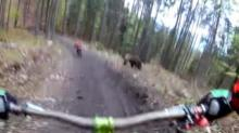 IMAGE: Have You Seen This? Bear chases bikers