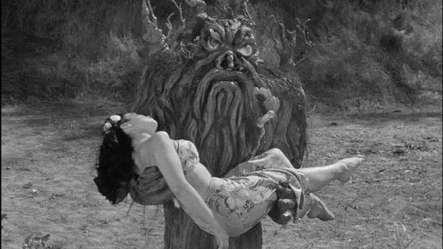 """New on Blu-ray is """"From Hell it Came"""" (1957), a ridiculous monster movie about a tree that comes to life on a South Seas island. (Deseret Photo)"""