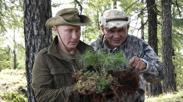 President Vladimir Putin of Russia, left, and his defense minister, Sergey Shoygu, examine some plants in the remote Tuva Region of Russia. The first episode of a new hourlong show aired on a state television channel mixed rugged scenes from the president's travels with praise from studio experts — to an extent that has brought some mockery. (Alexei Nikolsky/Pool via The New York Times) -- FOR EDITORIAL USE ONLY.