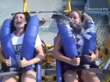 Seagull hits woman riding roller coaster