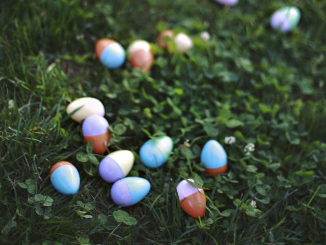 More than 4,000 Easter eggs filled the grassy fields at Pullen Park. <br/>Photographer: Lauren Cowart
