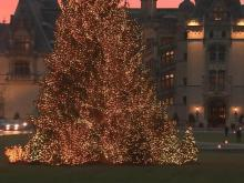 The halls of the Biltmore Estate in Asheville are all decked out for Christmas. The mansion has 67 Christmas trees inside, plus an enormous Ashe County tree on its lawn.