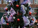 2013 Triangle Christmas Tree Challenge