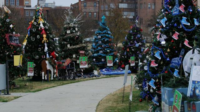 """Christmas trees decorated by non-profit organization supporters line the walkway in front of the Durham Performing Arts Center in effort to win their organization the prize of """"best decorated.""""  You will have until December 20 to cast your vote for the top three winners after All-star judges select an overall favorite on Dec. 6 while the community rallies for their favorite trees in Diamond View Park (photo by Wes Hight)."""