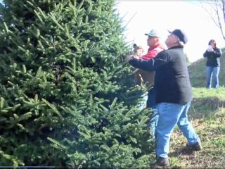 Larry Smith in Newland, NC, grew the tree that will grace the Capitol grounds this Christmas season.