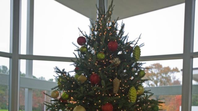 A decorated Christmas tree dominates the WRAL Studios lobby.