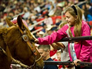 Kids get up close with some of the horses during intermission at the World's Toughest Rodeo at the RBC Center in Raleigh on Jan. 21, 2012.