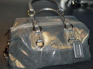 This silver Coach bag has style (Photo by Brittany Tune)