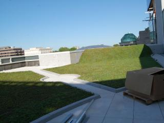 The fourth floor has a green roof and telescopes to view the stars. It will be open for special events and private parties.