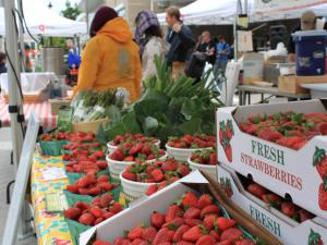 The Downtown Raleigh Farmers Market held in City Plaza kicked off the 2012 season on Wednesday, April 25th with a pick-picking event. The Farmers Market will run every Wednesday now through October.