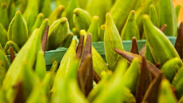 Edible Earthscapes displays fresh okra during the Midtown Farmers Market at North Hills in Raleigh on September 15, 2012.