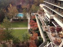 Wedding Lawn outside terrace pool at Herons