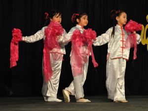 Performers of all ages demonstrated their skills in Chinese dance, martial arts and singing at the Chinese New Year Festival.