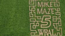 IMAGES: Maze completes corn maze