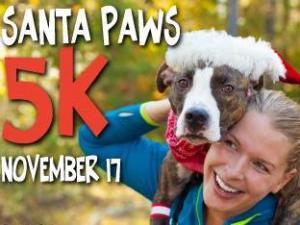 Santa Paws 5K 2013