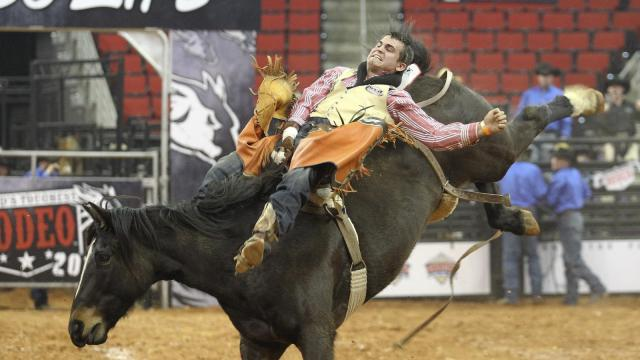 Championship bareback riding. World's Toughest Rodeo comes to the PNC Arena on Friday January 17, 2014. Featuring many local riders and Whiplash the Cowboy Monkey. (Chris Baird / WRAL Contributor).
