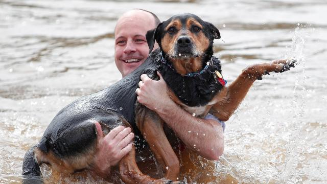 A man holds on to his dog as they leave the water after taking the plunge.  Families and friends came together to support the Special Olympics as they participated in the Polar Plunge held at NC State's Centennial Campus at Lake Raleigh in Raleigh, NC on Saturday morning. (Wes Hight / WRAL Contributor)