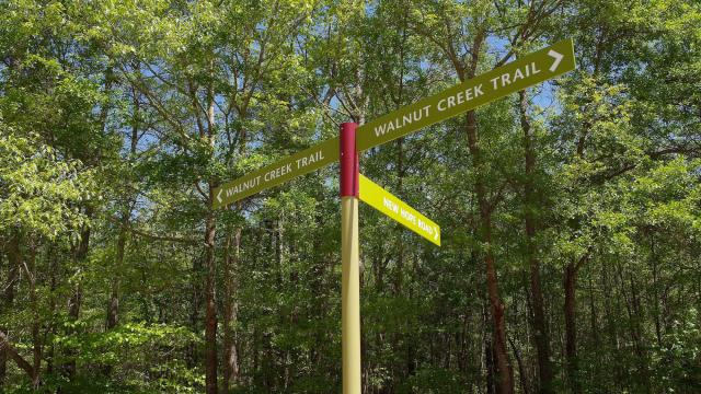 Raleigh's extensive greenway system has been funded over the years by parks bonds.