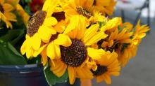 IMAGES: Midtown Farmers' Market, July 2014