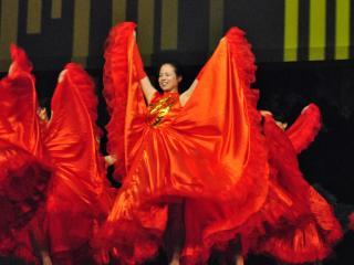 2014 International Festival of Raleigh