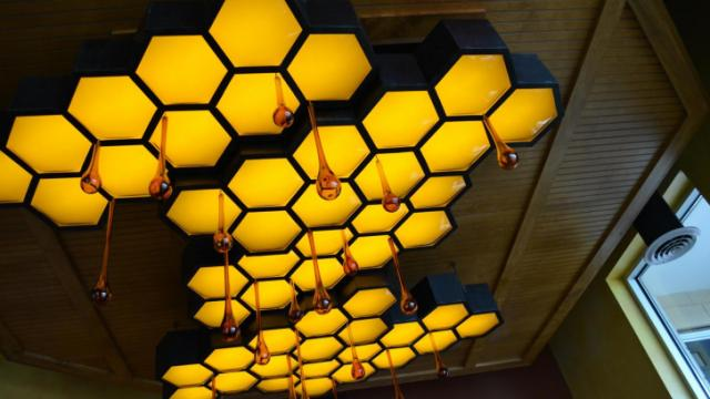 The ceiling at Tupelo Honey Cafe in Raleigh.