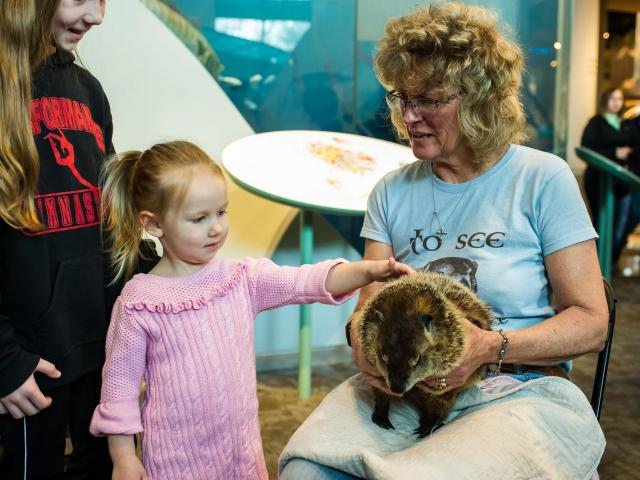 Kids get up close and pet Sir Walter Wally during the Groundhog Day activities at the North Carolina Museum of Natural Sciences in Raleigh on February 2, 2016.<br/>Photographer: Scott Clevenger