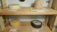 Aging cheeses