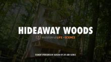 Hideaway Woods