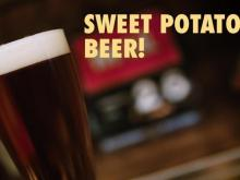 919 Beer:  Sweet potato lager