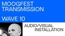 IMAGES: Duke offering Moogfest photo documentary course