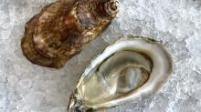 IMAGES: Recipe: New oyster casserole