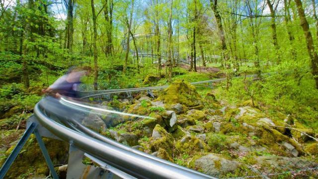 Wilderness Run Alpine Coaster in Banner Elk
