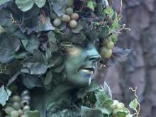 The State Fair's 'divine vine'