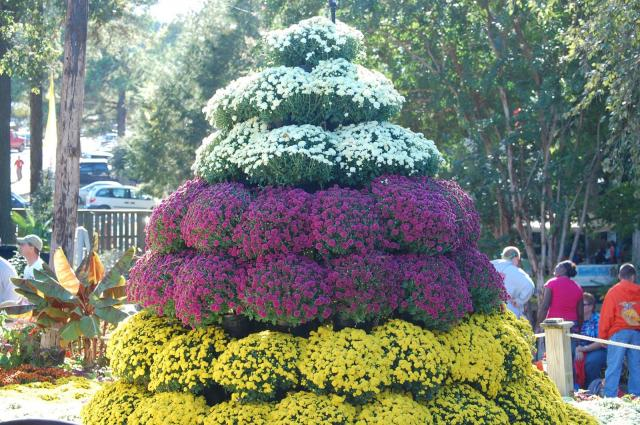 A look at the N.C. State Fair's Flower and Garden show. <br/>